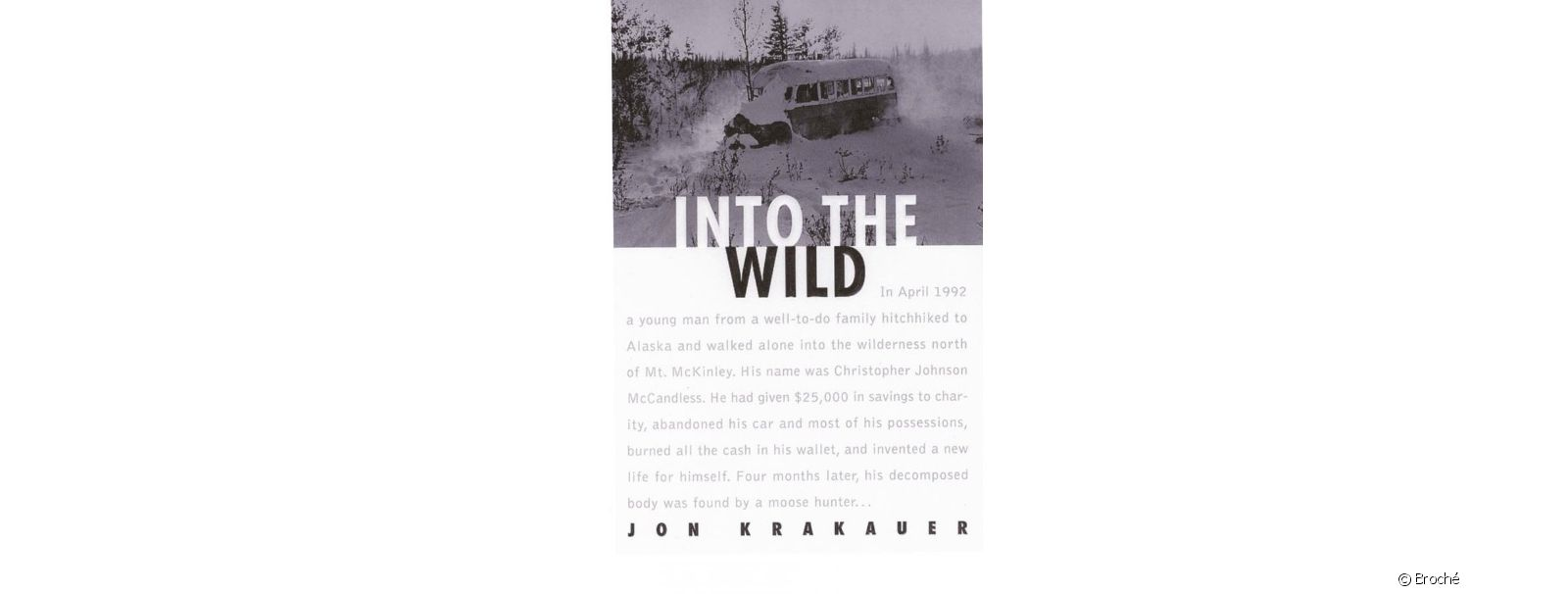 Voyage au bout de la solitude (Into the wild)
